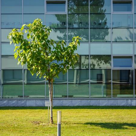 Südtrakt | Foto: aau/tinefoto.com