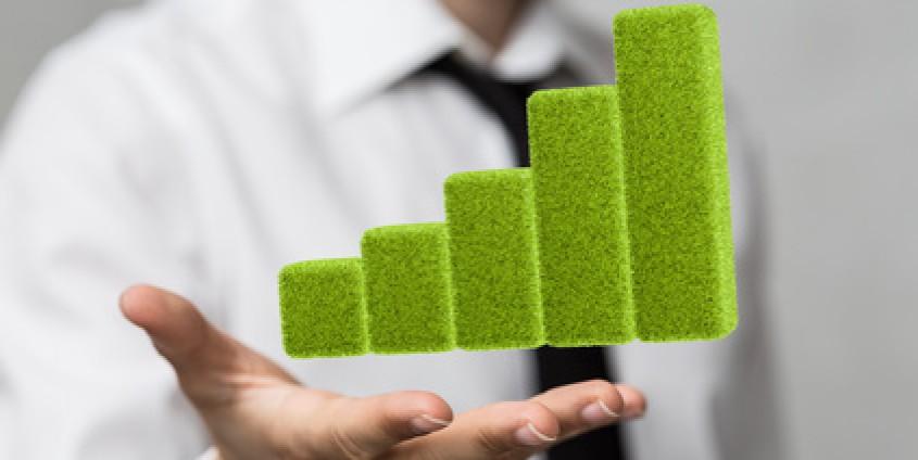 Grüne Stufen in Menschenhand