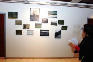 Ausstellungsteil Natur   Silvia Biazzo