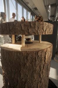 Baum, Mensch, Klang, Kunst | Baumboxen | Doriana Holecek