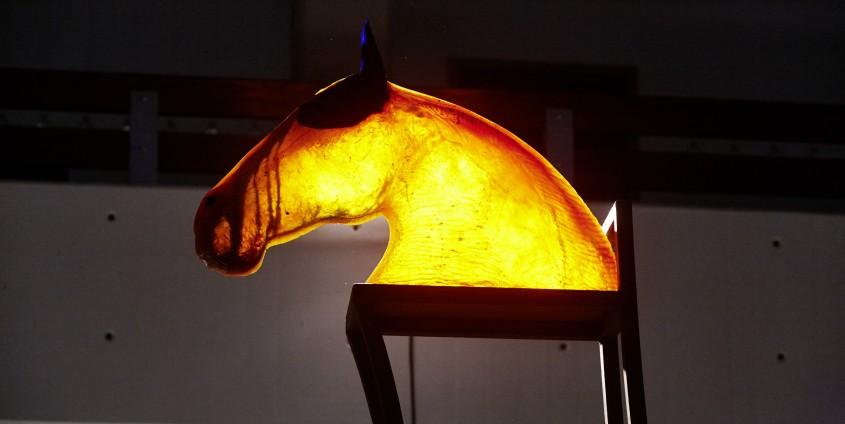 Das Pferd / CavalCarro aus Dordolla von Gaetano Ricci |Foto: aau/Puch