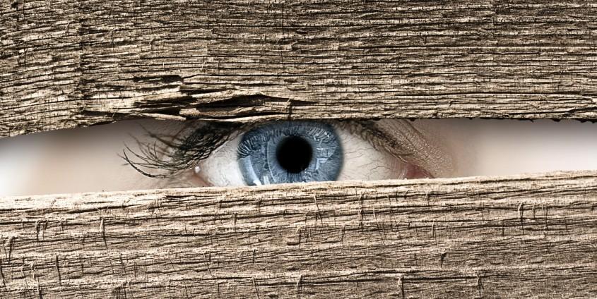 Beobachtendes Auge