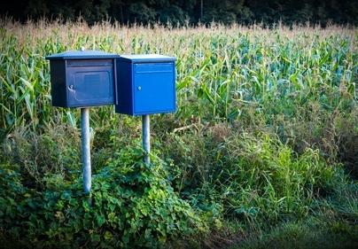blaue Briefkästen vor einem Mais-Feld