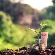 Ecopreneurship | Foto: tuk69tuk/Fotolia.com