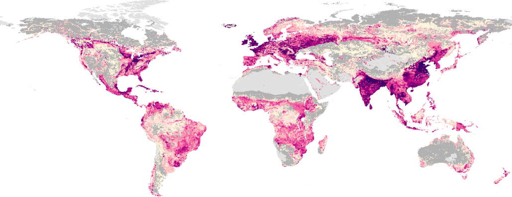 Biomass Turnover Time in Terrestrial Ecosystems Halved by Land Use.