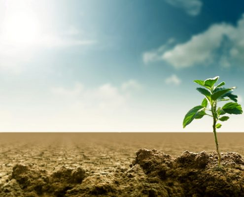 Landnutzung | Foto: Nmedia/Fotolia.com