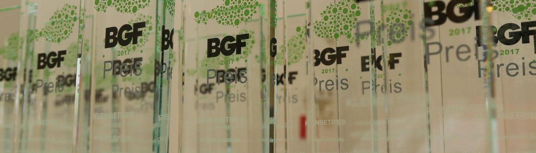 BGF Preis 2017