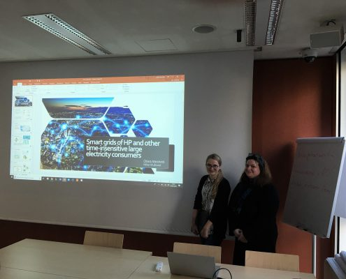 """Chiara Marchetti and Nika Hrusovar present """"Smart grids of heat pumps and other time-insensitive large electricity consumers"""", photo: Rondo-Brovetto P."""