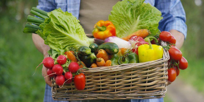 Gemüse | HQUALITY/Fotolia