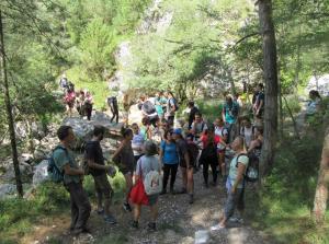 Exkursion ins Resiatal (18.8.2019) | Foto: Štefan Pinter