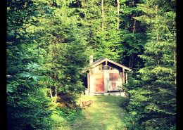 Holzhütte im Wald, Ankündigungsfoto Kinderliteraturveranstaltung