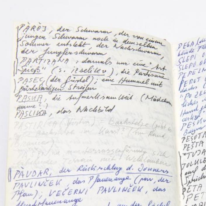 Peter Handkes Notizbuch - Die Wiederholung MIN