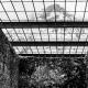 KZ Loibl | Blick durchs Gitter in die Freiheit