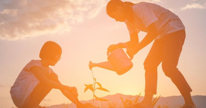 Zwei junge Menschen pflanzen miteinander eine Pflanze